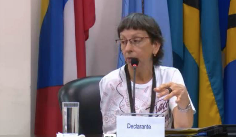 Ana Souza Pinto, from CPT, giving testimony at the hearing.